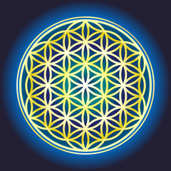 The Flower Of Life_2