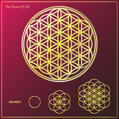 The Flower Of Life_1