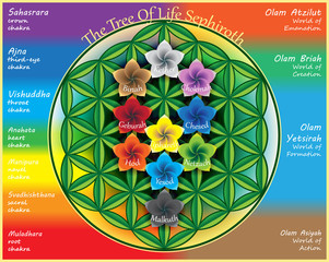 The Tree Of Life_5