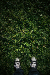 Cancas shoe on grass