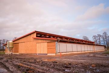 Agrarinvestition,  moderner Rindviehstall - Neubau ,