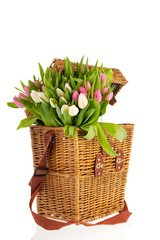 Pink and white tulips in basket