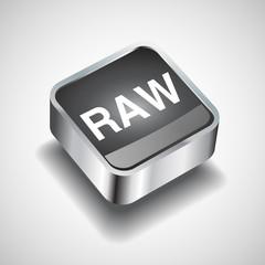 Raw file icon vector