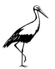 illustration of stork in black and white