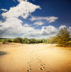 Footprints in the hot sand in the desert