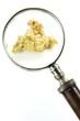 Goldnugget unter Lupe isoliert auf weißem Hintergrund