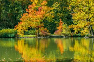 beautiful landscape scene in autumn