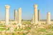 Raphana in present-day north of Jordan