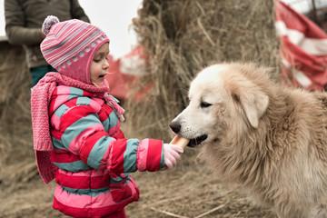 little girl feeding her puppy