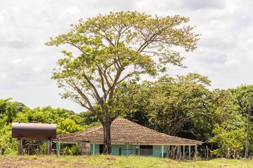 Typical Cuban Farmer's House