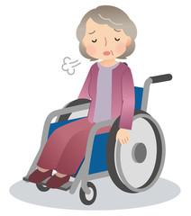 車椅子に乗る高齢者 困りごと