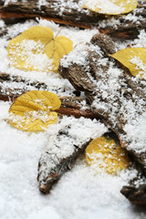 Pile of tree barks with autumn leaves in snow