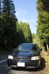 林道に止めた車