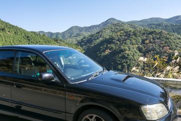 緑の山と車のサイドビュー