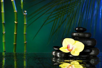 Orchid flower with water drops and pebble stones
