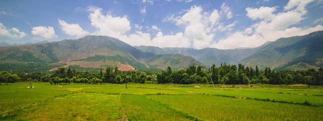 Panoramic of green Valley