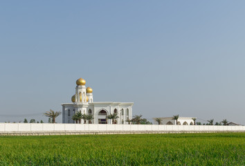 white Mosque with the rice field background