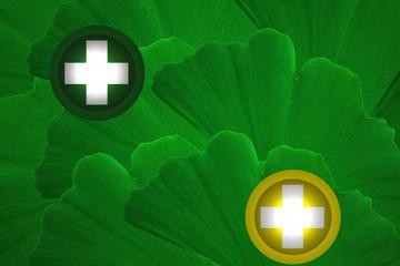 Santé par les Plantes -  Ginkgo Biloba