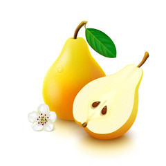 Yellow pear on white background