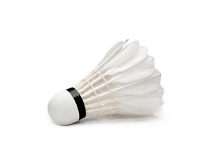Badminton isolated