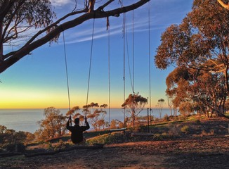 Man sitting on a swing overlooking the ocean, La Jolla, CA