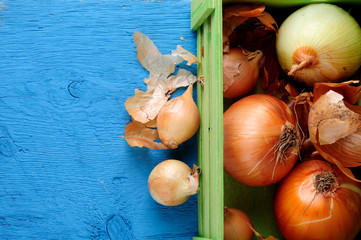onion in green box on blue wooden background