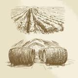 barrels, vineyard, harvest, farm - hand drawn collection - 76414475