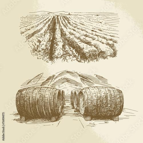 Fototapeta barrels, vineyard, harvest, farm - hand drawn collection