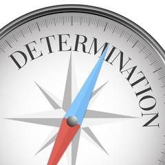 compass determination