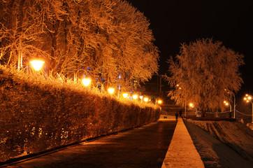 Night rimy park