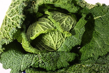 green cabbage just picking from the garden