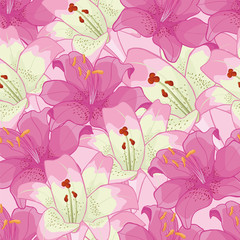 background with pink lilies. floral background