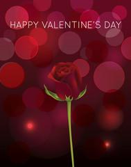 Rose with blur background Illustration