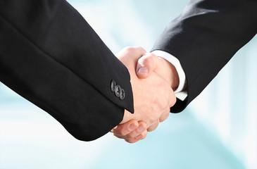 Handshake   Erfolgreich im Business