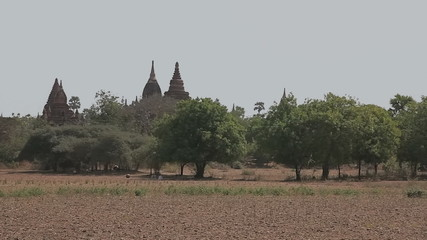 Panorama in Bagan with many temples and stupas