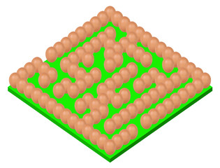 eggs setting Maze or labyrinth green base isolated