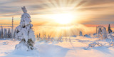 Sunray in Winter