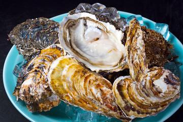 牡蠣 食べ物