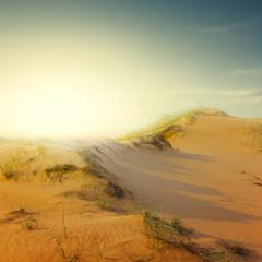 sand desert scene