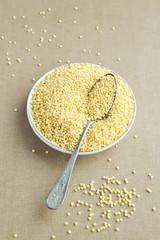 Organic Millet Gruel in a Spoon