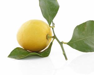 Beau citron