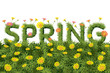 Flowers Spring Field Season Background with Word - 76433065
