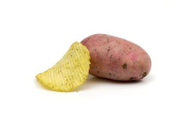 potato on the white background