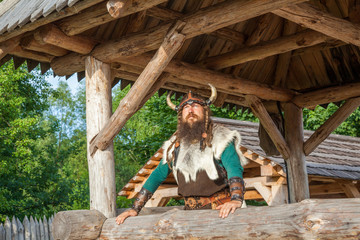 Viking in his house territory