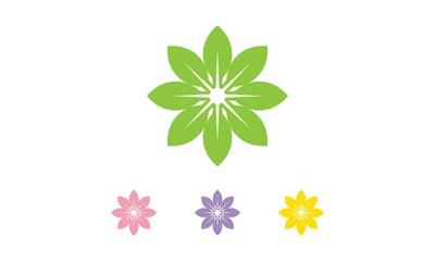 Star Leaf Logo v.2