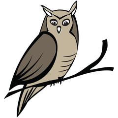 Isolated vector owl