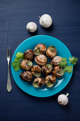 Baked snails with garlic butter and herbs on a dark blue surface