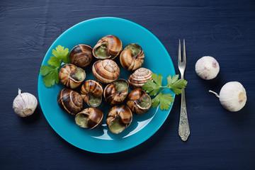 Glass plate with escargots de Bourgogne, dark blue background