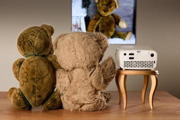 Teddy Bär Pärchen, die mit einem Mini Projektor ihre Fotos ans