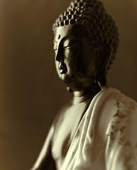 Buddha Statue (close up)